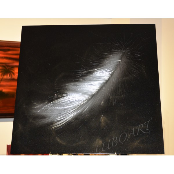 "24"" x 24""   The Feather"